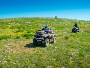 While most ATV accidents occur in the spring and summer, they can happen at any time when riders are careless. Contact us for help with your financial recovery after ATV accidents.